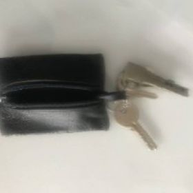 Pronađeni ključevi od stana Trešnjevka, rotor Kranjčevićeva